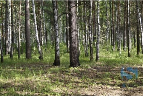 Продажа участка, Тюмень, Тер нст Сосновая поляна - Фото 5