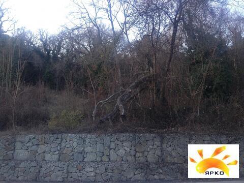 Продается земельный участок в окружений хвойного леса! - Фото 4