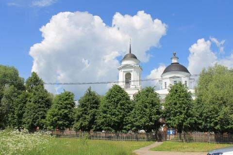 19 соток с.Михайловское Домодедовского района - Фото 4