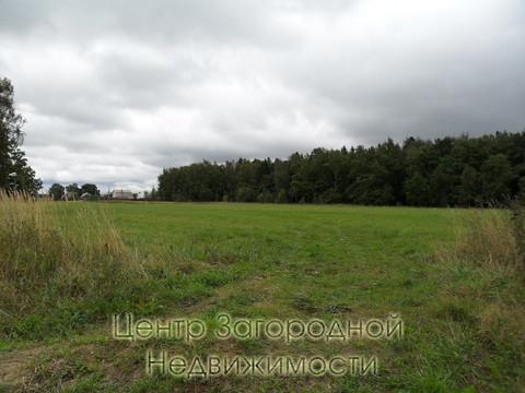 Участок, Ярославское ш, 35 км от МКАД, Цернское д, д.Цернское. . - Фото 2
