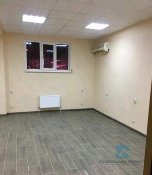 Аренда псн, Краснодар, Улица Шевцова - Фото 4
