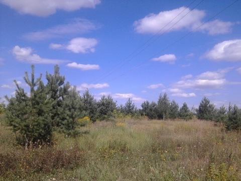 Участок в Новоселкино - Фото 2