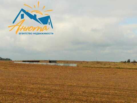 Участок 4 га в деревне Федорино для сельскохозяйственного производства - Фото 2