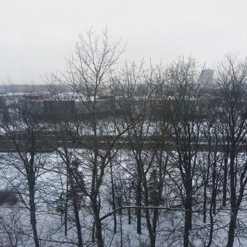 Квартира в Зеленограде - Фото 5