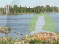 Продажа дома, Шатрово, Шатровский район - Фото 4