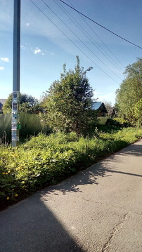Продам участок 8 соток ИЖС д. Чапаевка - Фото 4