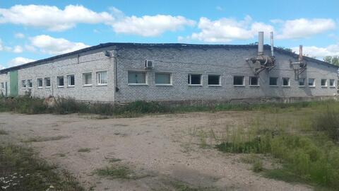 Продам производственное здание г. Сморгонь, Республика Беларусь - Фото 3