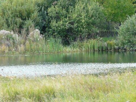 Предлагаю для организации платной рыбалки пруд 1300 кв.м на 1 Га земли - Фото 2