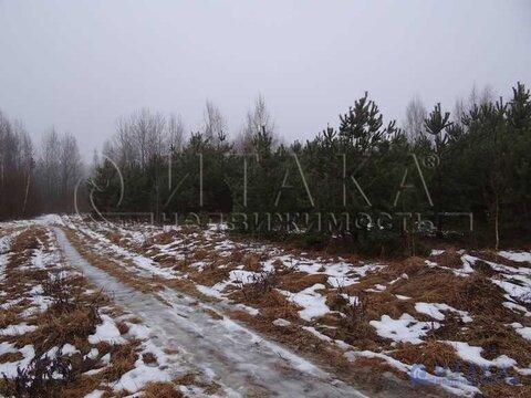 Продажа участка, Крупп, Печорский район - Фото 2