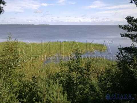 Продажа участка, Слудицы, Печорский район - Фото 4
