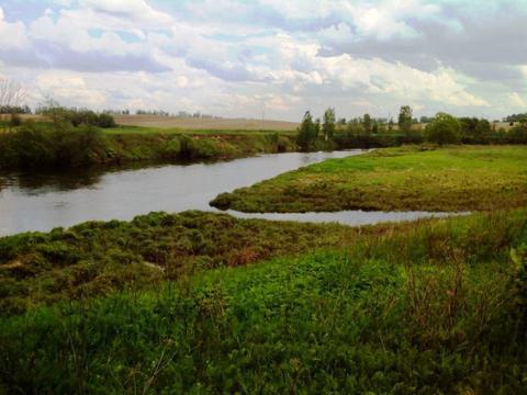 Участок 28 соток в деревне на берегу реки Москва, вид на воду (ПМЖ). - Фото 1