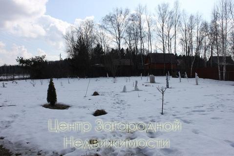 Участок, Минское ш, 40 км от МКАД, Петелино д. (Одинцовский р-н), СНТ . - Фото 1