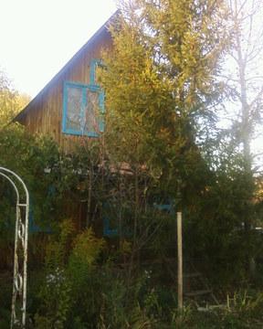 Продам сад участок с домом в ДНТ Пчелка, рядом с дер Новые Карашиды - Фото 5