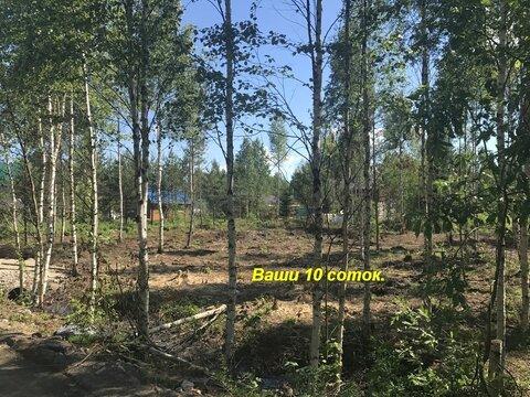 Продам участок Всеволожский р-он массив Блудное СНТ Родничковое - Фото 4
