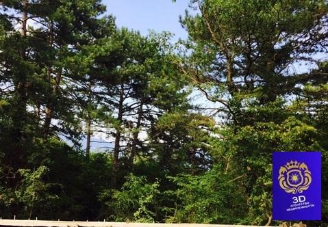 Продажа участка, Ореанда, Поселок городского типа Ореанда - Фото 3