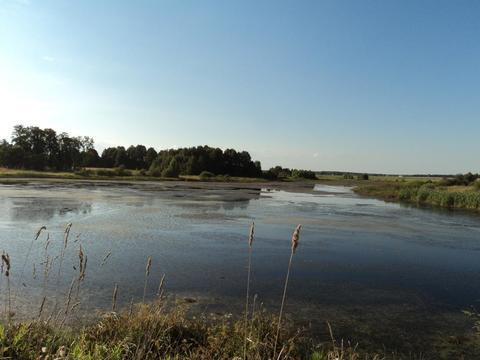 Участок на берегу озера, 15 соток, д. Сивково, 100 км от МКАД, МО. - Фото 1
