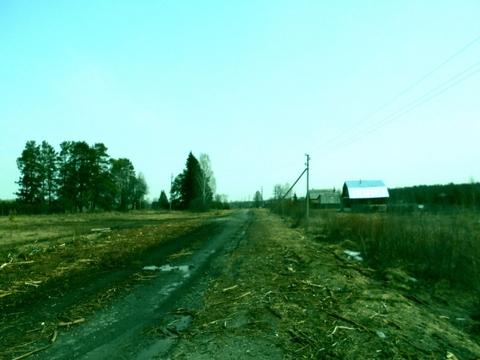 Судогодский р-он, Колесня д, земля на продажу - Фото 5