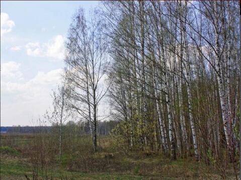 Продается земельный участок, Большое Петровское, 14 сот - Фото 1