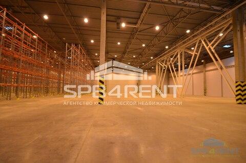 Аренда склада класса А 2950 кв.м. в Шушарах - Фото 4