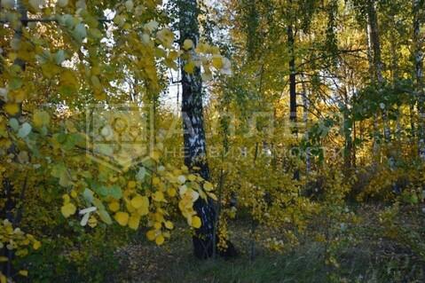 Лесной участок 22 сот. - Фото 2