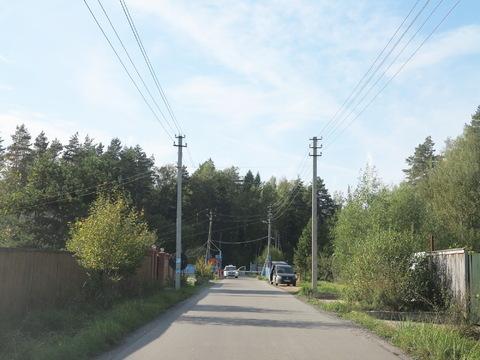 Большой участок 40 соток с лесными деревьями. Газ. Охрана. - Фото 2