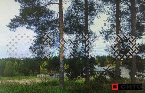 Продажа участка, Маза, Кадуйский район, Череповец - Фото 3