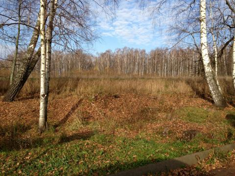 Продаётся земельный участок д. Тюфанка рядом с кп Южные озёра - Фото 2
