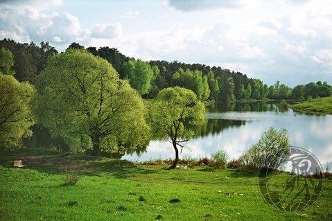 Участок 5,5 соток на краю леса, СНТ Дубрава, Климовск, Подольск. - Фото 3