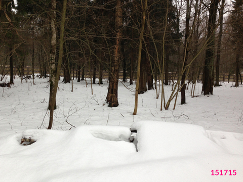 Продажа земельного участка, Истринский район, Деревня Веретёнки - Фото 4