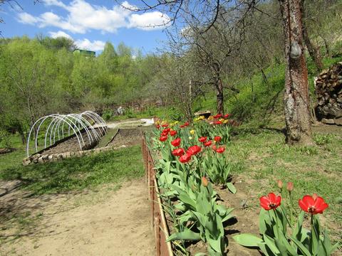 Владимир, сад Коммунальник, дом на продажу - Фото 5