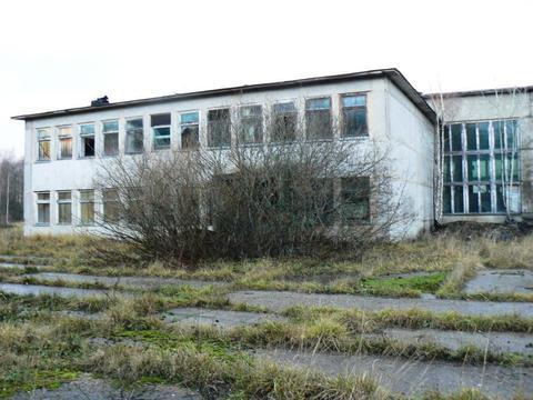 Комплекс объектов промышленного назначения общ. пл. 4518 кв.м. + 5 га - Фото 4