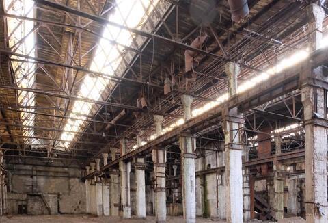 Производственно-складское здание 12500 кв.м. - Фото 4