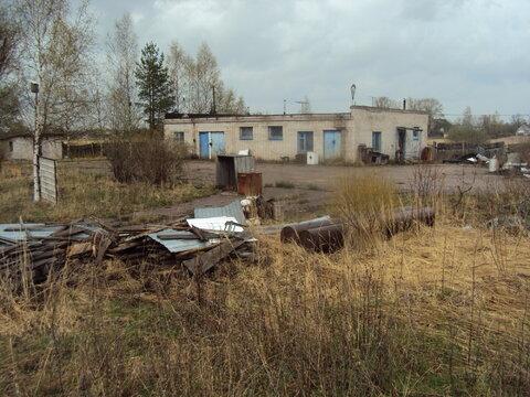 Продам земельный участок в Тверской области - Фото 5