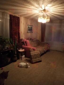 Продается квартира г.Фрязино, улица Ленина - Фото 4