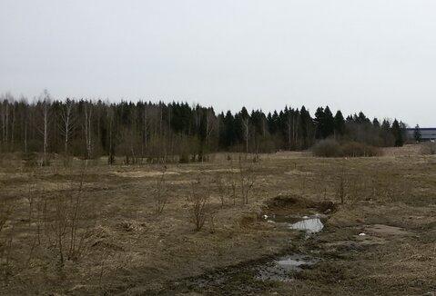 Промышленный участок 2,4 Га на 1-й линии Рогачевского шоссе - Фото 3