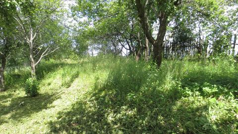 Продается земельный уч-ок 10 сот.в СНТ Надежда г. Александров р-н црмм - Фото 1