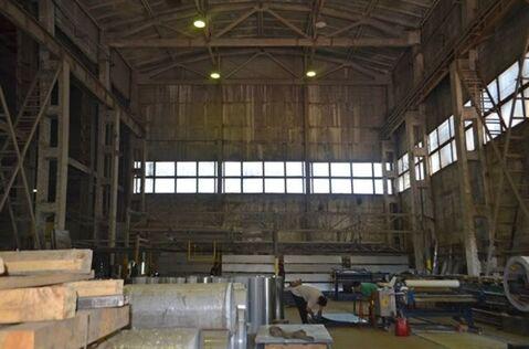 Сдам складское помещение 1687 кв.м, м. Площадь Ленина - Фото 4