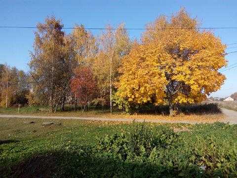 Продам дом в Дягилево - Фото 5