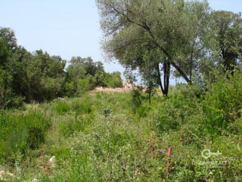 Продажа зем.участка, Черногория, Кунье - Фото 5