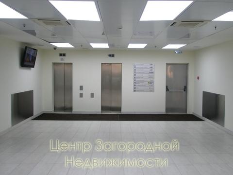 """Аренда офиса в Москве, Динамо, 493 кв.м, класс B+. м. """"Динамо"""", . - Фото 4"""