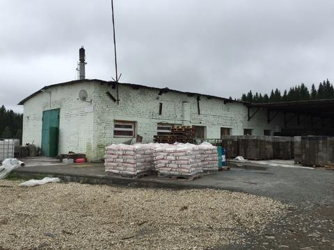 Продам действующий бизнес по производству арболитового строительного б - Фото 2