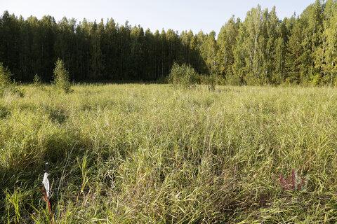Земельные участки, Доброво-Север (Полевской тракт 21 км.) Оч. 1, . - Фото 2