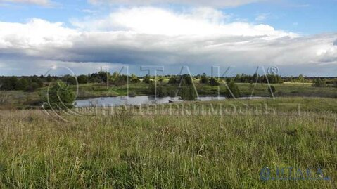 Продажа участка, Псков, СНТ Великорецкое-3 сад - Фото 1