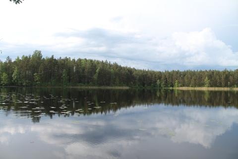 Участок 1 Га рядом с озером - Фото 4
