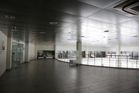 Продажа торгового помещения, м. Проспект Просвещения, Санкт-Петербург - Фото 5