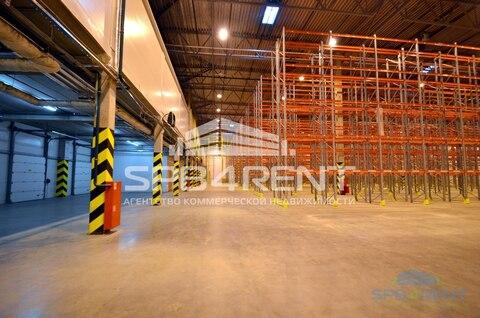 Аренда склада класса А 2950 кв.м. в Шушарах - Фото 3