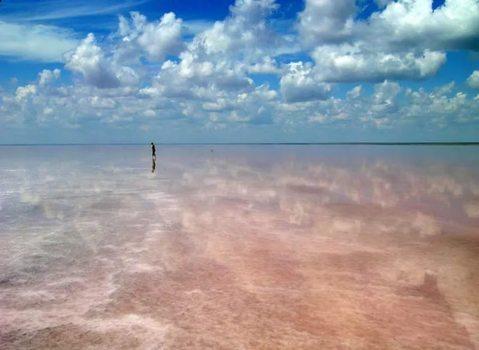 Участок 36 га на берегу соленего оз. Эльтон (аналог Мертвого моря) - Фото 5