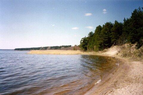 Золотой пляж на оз.Глубокое , Нагорное + 2 км - Фото 1
