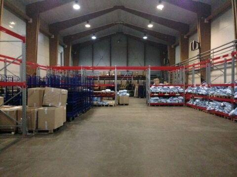 Сдам складское помещение 930 кв.м, м. Елизаровская - Фото 3