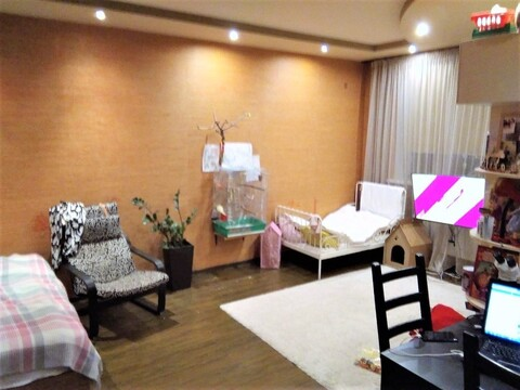 1 комнатная квартира-студия в г. Александров по ул. Королева - Фото 2